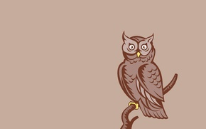 Picture owl, bird, minimalism, branch, light background, owl