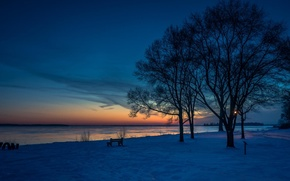 Picture clouds, snow, sunset, blue, tree