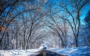 Picture winter, road, the sky, snow, trees, tunnel