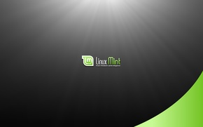 Picture Linux, operating system, Linux Mint, from freedom came elegance