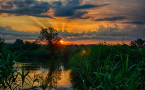 Picture water, nature, Landscapes