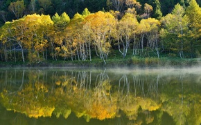 Picture autumn, water, trees, fog, lake, reflection, slope