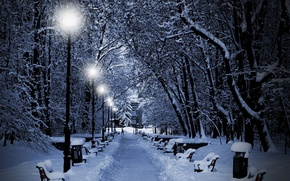 Wallpaper Park, snow, winter, trees, lights, the evening, benches, lights