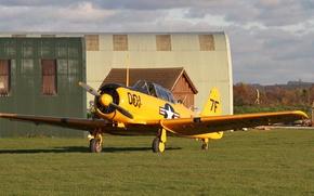 "Wallpaper American, field, SNJ-5C ""Texan"", training aircraft, grass, the airfield, hangars"