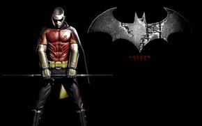 Picture the game, logo, costume, symbol, cloak, stand, character, Robin, Batman arkham city, dibo
