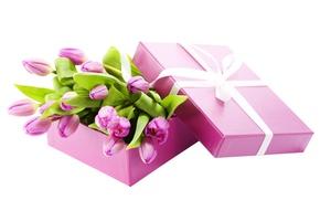 Wallpaper box, bouquet, tape, tulips