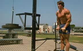 Picture athlete, Actor, bodybuilder, Arnold Schwarzenegger, Producer, Director, Arnold Schwarzenegger