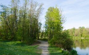Picture grass, trees, lake, green, Spring, track, trees, lake, spring, path