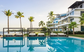Picture palm trees, the ocean, pool, pool, resort, Dominica, Dominican republic, Gansevoort