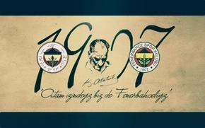 Picture wallpaper, sport, logo, football, Fenerbahce SK
