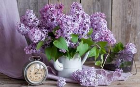 Picture watch, bouquet, alarm clock, lilac
