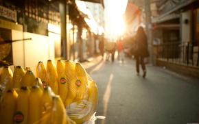 Picture light, street, bananas