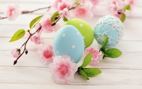 Picture flowers, holiday, eggs, branch, spring, blue, green, Easter, pink, flowering, Easter, Easter