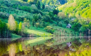 Picture trees, lake, reflection, mountain, home, spring, slope