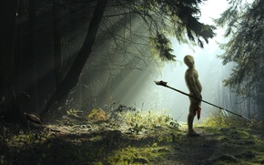 Picture forest, light, warrior, spear, hairball