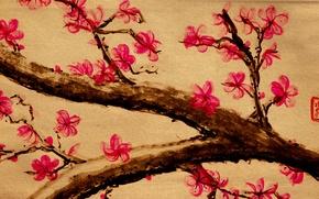 Picture flowers, branches, tree, figure, Sakura