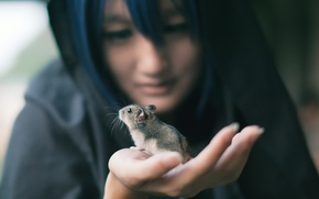 Picture girl, background, mouse