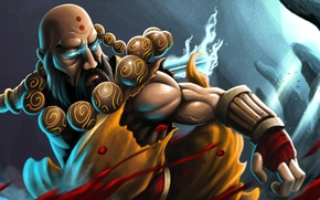 Picture beard, diablo 3, monk, reaper of souls