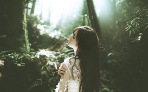 Picture forest, dress, brunette, Asian