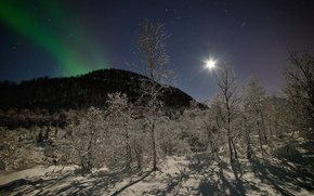 Picture winter, forest, stars, snow, trees, mountains, night, the moon, Northern lights, Norway