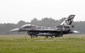 "Picture fighter, the airfield, F-16, Fighting Falcon, multipurpose, ""Fighting Falcon"""