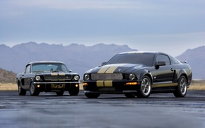 Picture road, machine, widescreen, ford, shelby, Ford, Shelby, gt-h cars