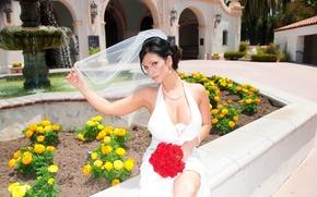 Picture bouquet, denise milani, wedding dress