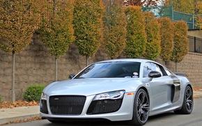 Picture Audi, V10, R8