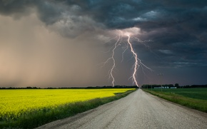 Picture the storm, lightning, Jeff Wallace
