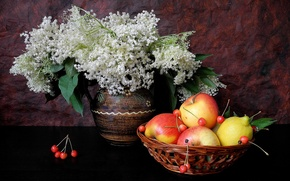 Picture flowers, lemon, Apple, vase, fruit, still life, cherry