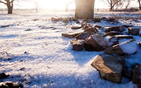 Picture winter, the sun, snow, tree, foliage, Dawn, bricks, rays of light, the garden