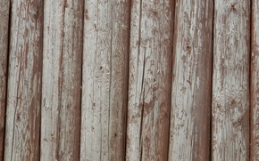Picture background, wall, widescreen, Wallpaper, texture, logs, wallpaper, log, widescreen, background, beautiful Wallpaper, the Wallpapers, full …
