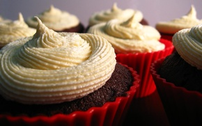 Picture the sweetness, cake, cream, dessert, delicious, tartlets