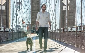 Picture Dog, Keanu Reeves, Keanu Reeves, Movie, John Wick 2, John Wick: Chapter Two