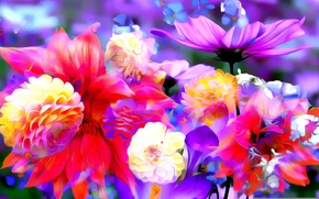 Picture line, flowers, rendering, paint, petals, Bud