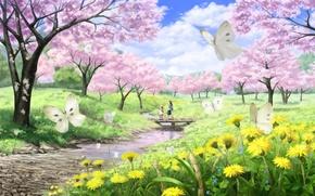 Picture butterfly, landscape, bridge, river, stream, girls, spring, Sakura, art, walk, river, dandelions, imaoka