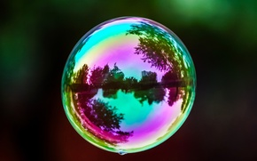 Picture color, macro, reflection, background, Wallpaper, mood, blur, widescreen, full screen, HD wallpapers, overflow, bubble, widescreen