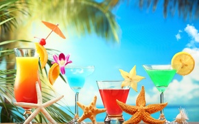 Picture summer, stars, lemon, orange, glasses, fruit, citrus, cocktails, sea, cocktails, carambola
