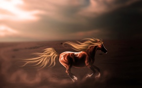 Picture the sky, look, animal, dust, art, mane, profile, jump, horse