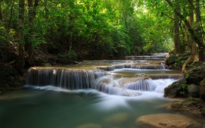 Picture greens, forest, trees, river, waterfalls