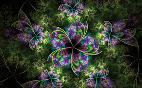 Picture flower, leaves, light, pattern, petals