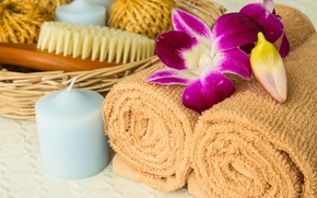 Picture candle, relax, bath, towels, flowers, bath, Spa, candle, spa, towel, brush