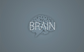 Wallpaper Brain, brains, the inscription, minimalism, grey background