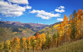 Picture autumn, forest, the sky, the sun, clouds, trees, mountains, blue, valley, slope, USA, Colorado