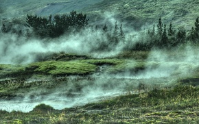 Picture green, grass, trees, nature, water, fog, Iceland, geothermal area, Selfoss, fountain geyser, Strokkur Geyser