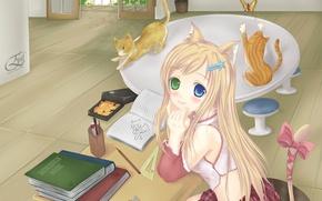 Picture cat, room, butterfly, anime, art, girl, neko, lessons