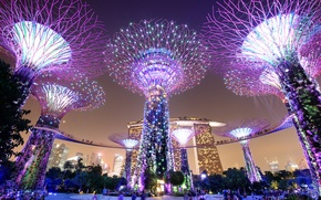Picture night, lights, Singapore, megapolis, Singapore, Marina Bay Sands, Gardens by the Bay, Parks