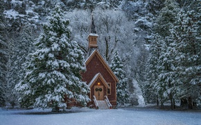 Picture winter, forest, snow, trees, Church, Nevada