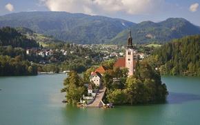 Wallpaper the city, Lake Bled, lake, Slovenia, Church