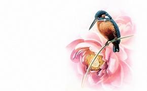 Picture bird, minimalism, East, master, art, Lotus, painting